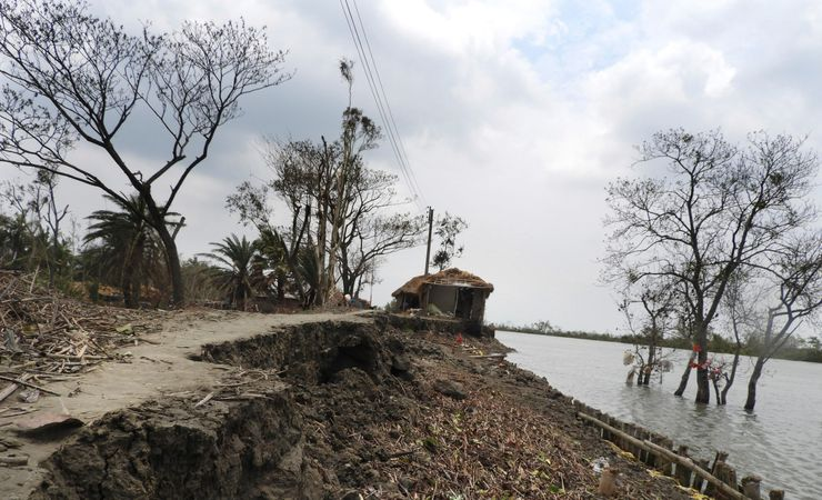 Sundarbans devastated by cyclone, as virus halts migration