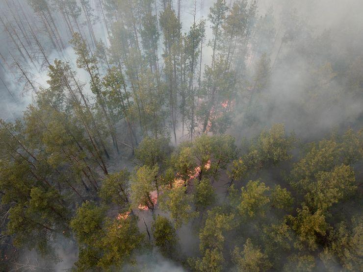 Smoke from wildfires near Chernobyl engulfs Ukraine capital
