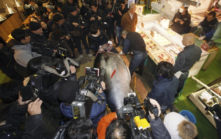 Bluefin tuna sold for $320,000 in Tsukiji's last new year
