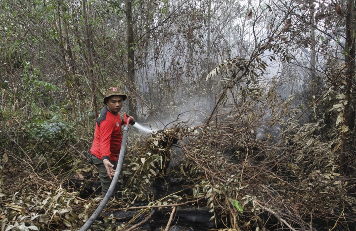 Indonesia mobilizes to combat health-damaging forest fires